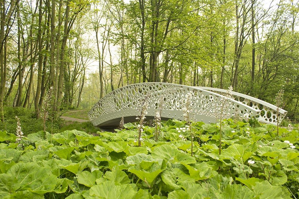 Brug-Park-Zestienhoven-BOOM-landscape